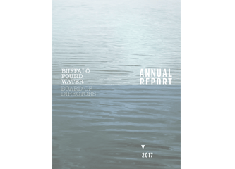 buffalo pound water treatment plant annual report 2017